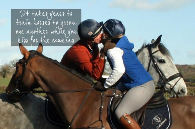 5 horse kiss