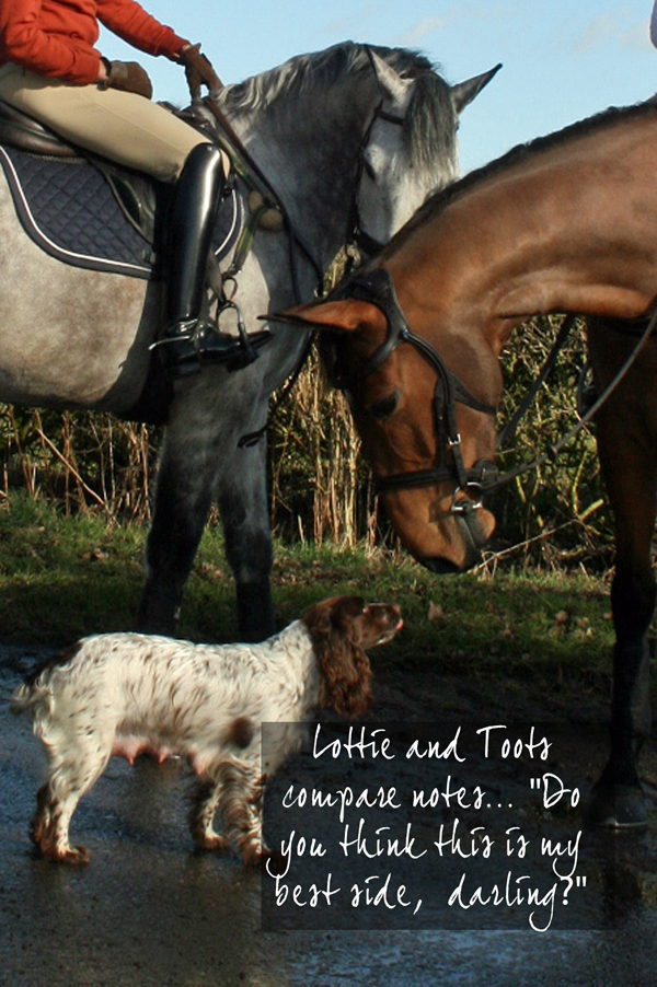 6 Lottie and Toots