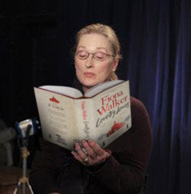 Meryl book fake